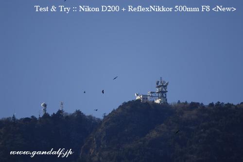 Nikon D200 + RF500